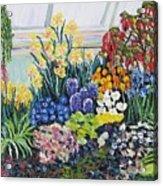Greenhouse Flowers Acrylic Print
