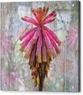 Greenhouse On A Rainy Day Acrylic Print