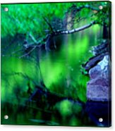 Greens 01 Acrylic Print