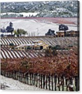 Greenville Vineyard In Snow Acrylic Print