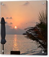 Greeting A New Day Acrylic Print