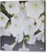 Greeting Card/sympathy Card Acrylic Print