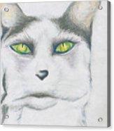 Gretta Acrylic Print