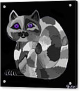 Grey Cat With Purple Eyes Acrylic Print