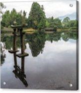 Grey Heron On Lake Kinrin Acrylic Print