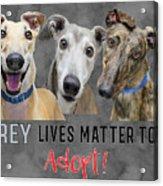 Grey Lives Matter Too Adopt Acrylic Print