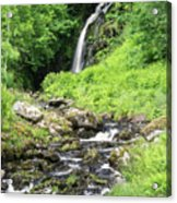 Grey Mares Tail Acrylic Print