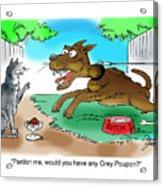 Grey Poupon Acrylic Print