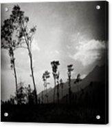 Grey Skies Acrylic Print