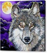 Grey Wolf And Full Moon Acrylic Print