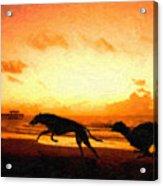 Greyhounds On Beach Acrylic Print