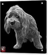 Greyscale Lhasa Apso Pop Art - 5331 - Bb Acrylic Print