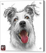 Greyscale Terrier Mix 2989 - Wb Acrylic Print