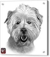 Greyscale West Highland Terrier Mix - 8674 - Wb Acrylic Print