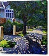 Griffith Avenue Through The Trees Acrylic Print