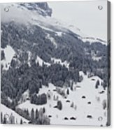 Grindelwald In Winter 3 Acrylic Print