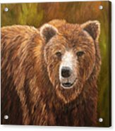 Grizzley Acrylic Print