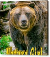 Grizzly Bear Nature Girl    Acrylic Print