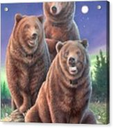 Grizzly Bears In Starry Night Acrylic Print
