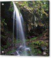 Grotto Falls In The Great Smokies Acrylic Print