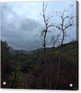 Grotto Trail In Rain Acrylic Print