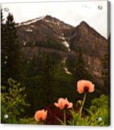 Grounds At Lake Louise Acrylic Print