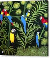 Group Of Macaws Acrylic Print
