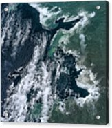 Growing Kapoho Coastline Acrylic Print