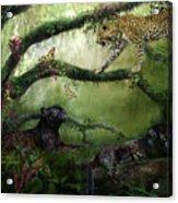 Growing Wild Acrylic Print
