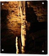 Growth - Cave 5 Acrylic Print