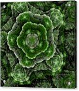 Growth Acrylic Print
