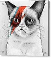 Grumpy Cat As David Bowie Acrylic Print