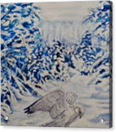 Gryfalcon In Taos Acrylic Print