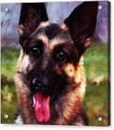 Gsd Portrait ... Montana Art Photo Acrylic Print