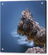 Guardian Of The Sea Acrylic Print