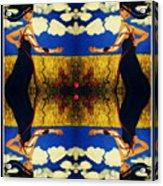 Guiar-symmetrical Art Acrylic Print