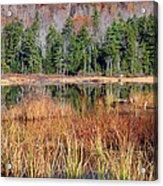 Guinea Pond - Sandwich New Hampshire Usa Acrylic Print