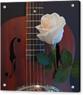 Guitar And Rose 2 Acrylic Print
