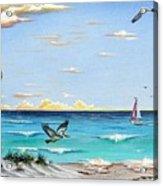 Gulf Beach Pathway Acrylic Print