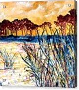 Gulf coast seascape tropical art print Acrylic Print