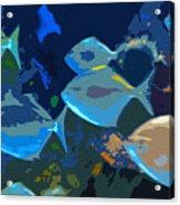 Gulf Stream Acrylic Print