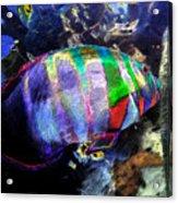Gulf Waters Acrylic Print
