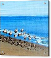 Gulls At Play Acrylic Print