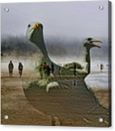 Gulls Dream Acrylic Print