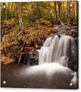 Gully Lake Cascades #1 Acrylic Print