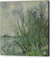 Gustave Loiseau 1865 - 1935 Willows, Edges Oise Or On The Banks Of The Oise Acrylic Print