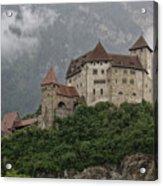 Gutenberg Castle Acrylic Print by Yair Karelic