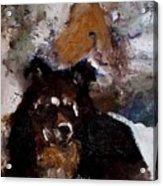 Gypsy Dog Acrylic Print