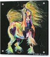 Gypsy Gold Pony Acrylic Print