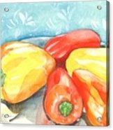 Gypsy Peppers Acrylic Print